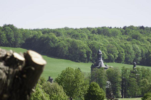 kasteel bij boerderijcamping